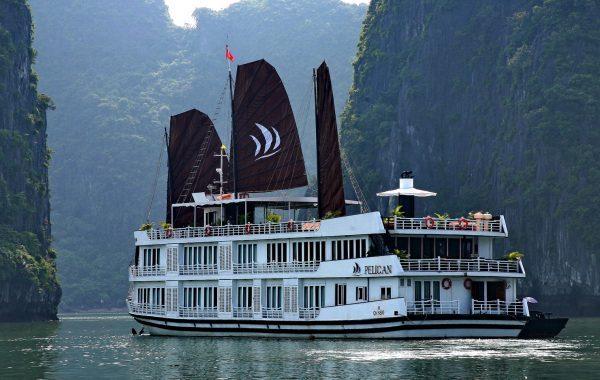 Pelican-cruise12-600x380